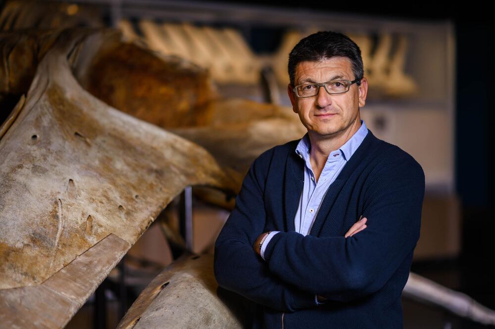 Prof. Dr. Matthias Glaubrecht