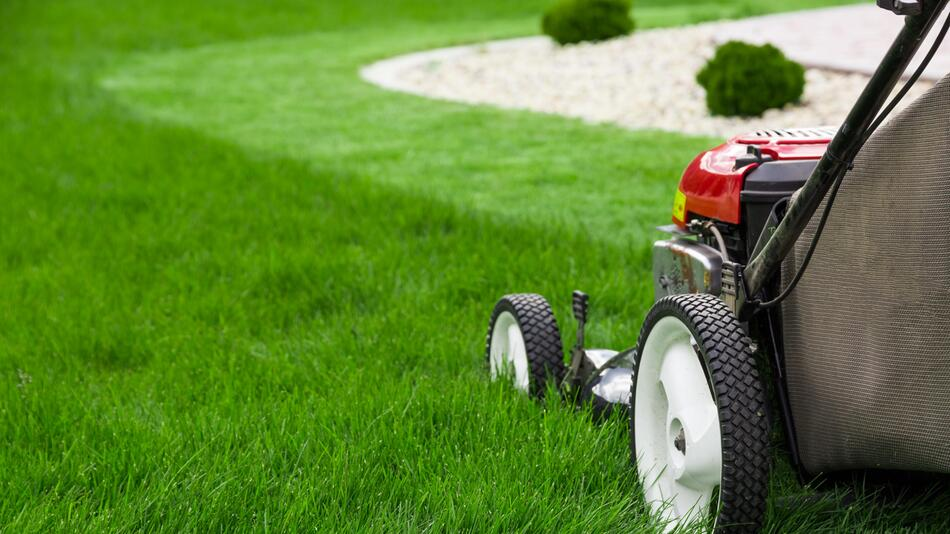 Rasenmäher, Mähen, Mähroboter, Benzin, Akku, Garten, Rasen, Rasenpflege, Outdoor, Technik