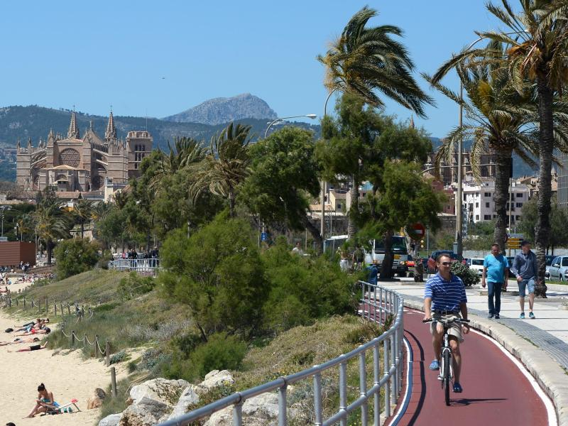 Bild zu Radurlaub auf Mallorca