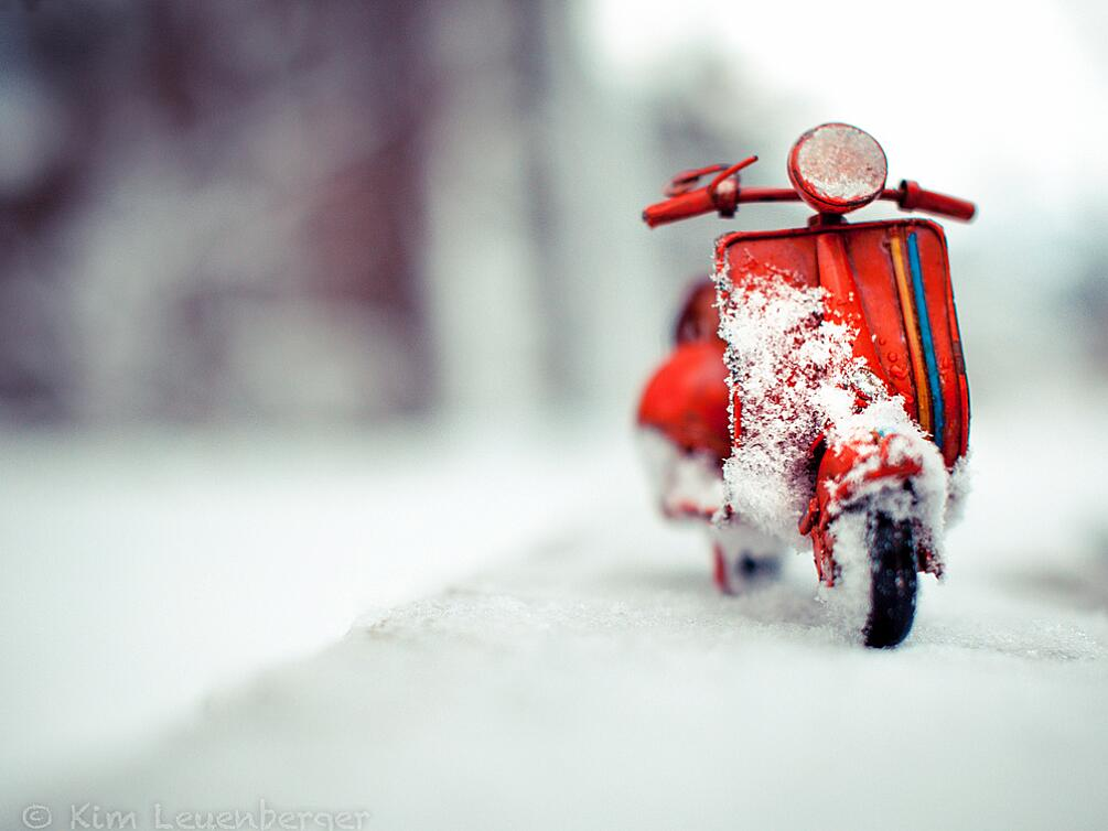 Bild zu Mit dem Motorroller durch den Winter