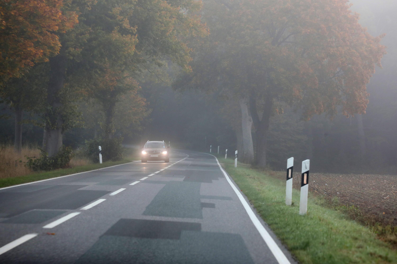 Bild zu Auto im Nebel
