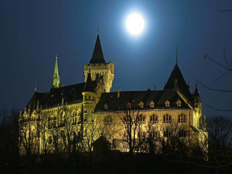 Bild zu Wernigeröder Schloss