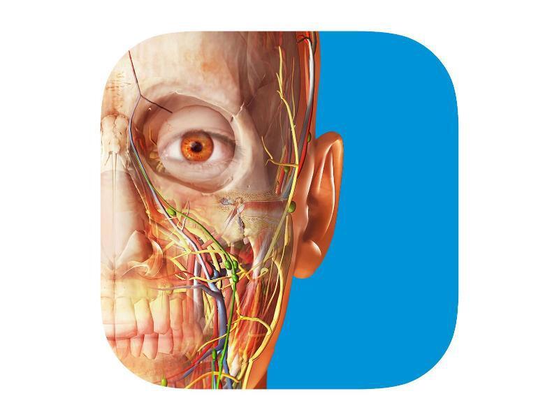 Top Ten: Apps für angehende Mediziner und Künstler beliebt   GMX.AT