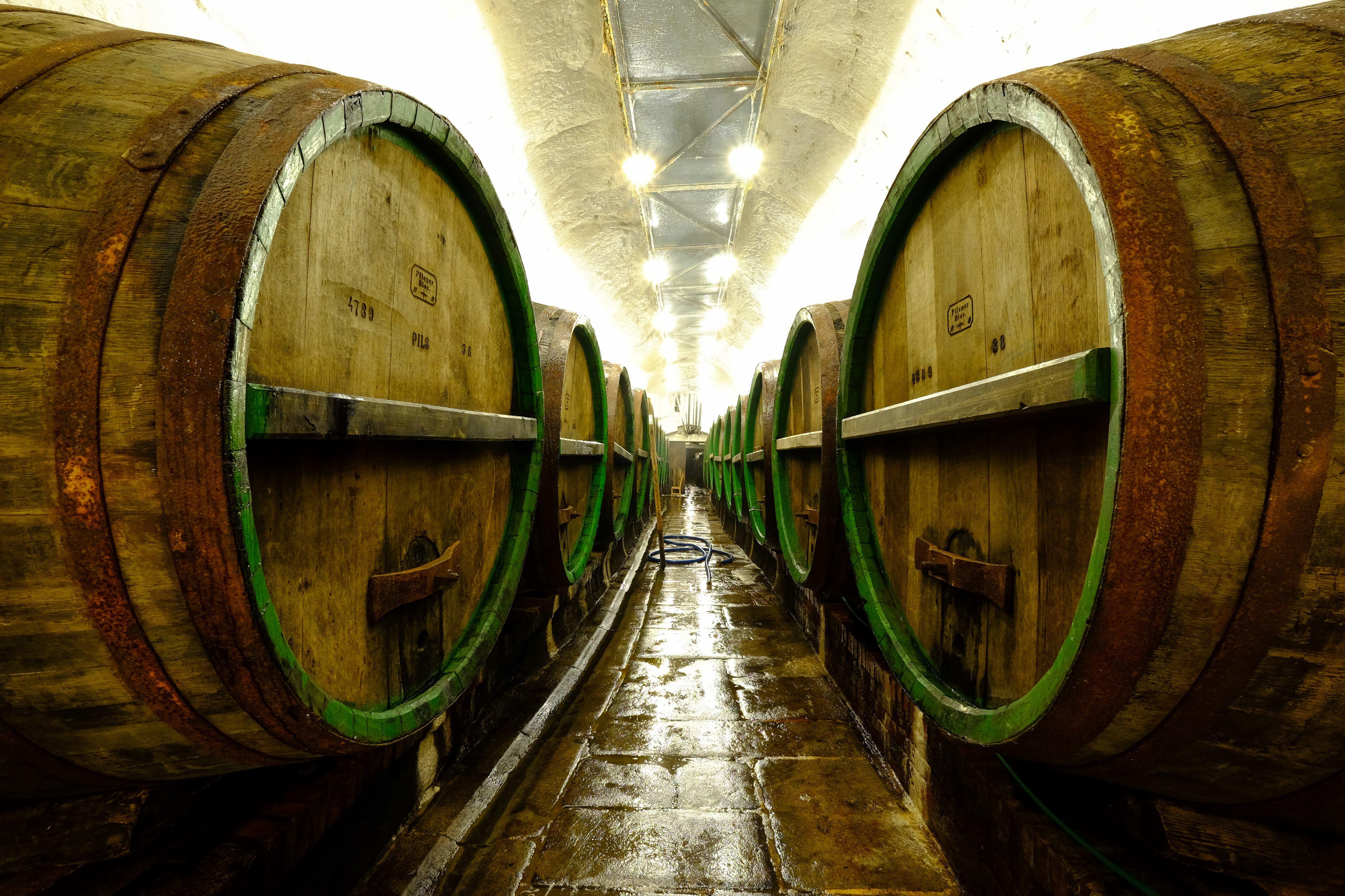 Bild zu China Brauereien Bier