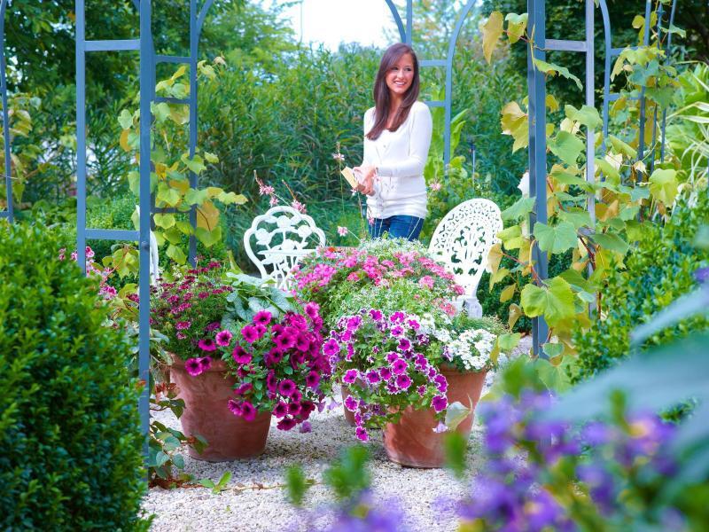 Bild zu Farbgestaltung im Garten