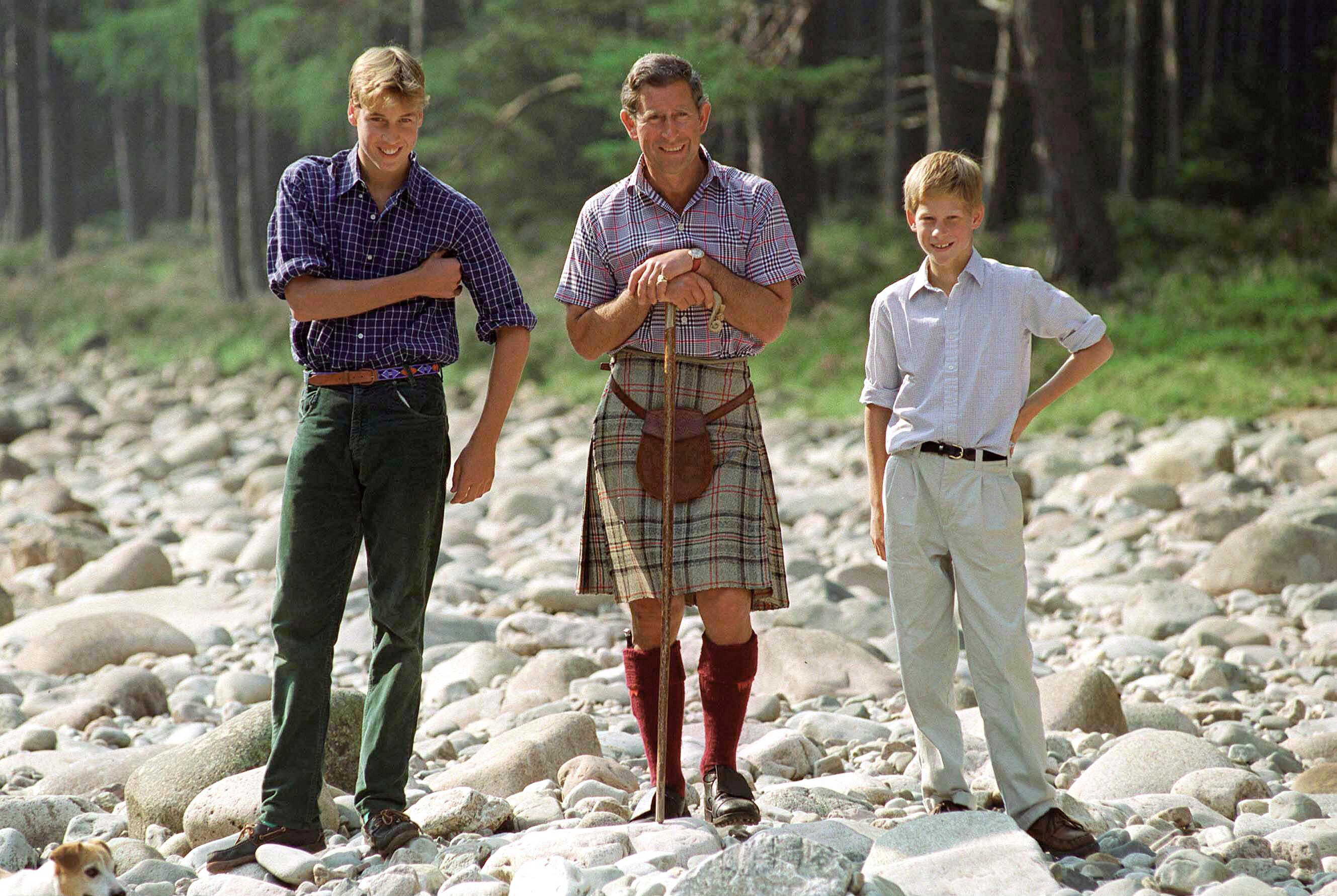 Bild zu Prinz William, Prinz Charles, Prinz Harry