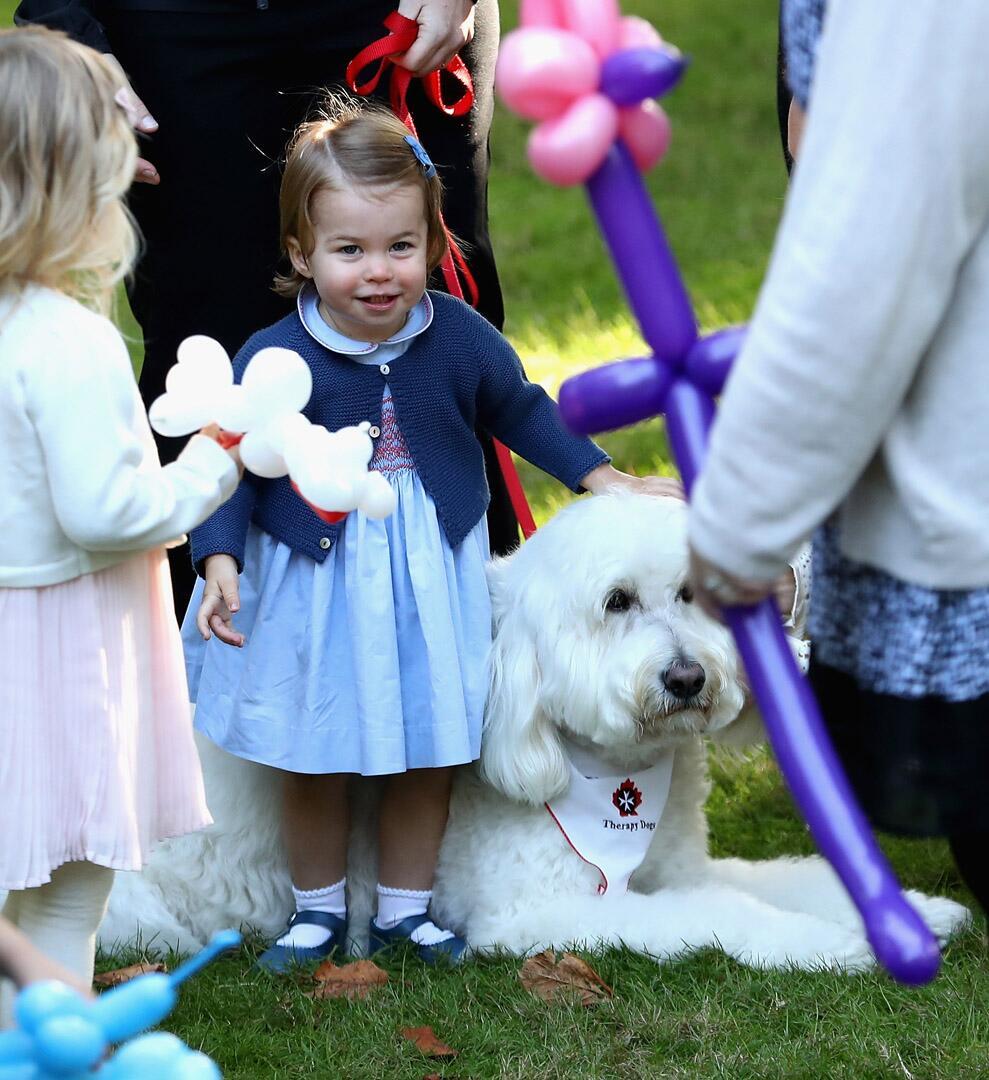 Bild zu Royals, Prinzessin Charlotte, Kinderparty, Hund