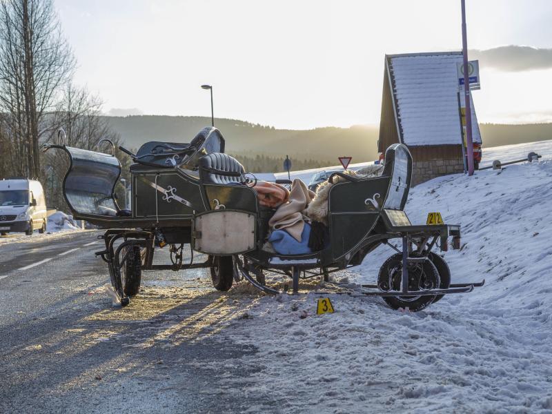 Bild zu Unfall mit Pferdeschlitten