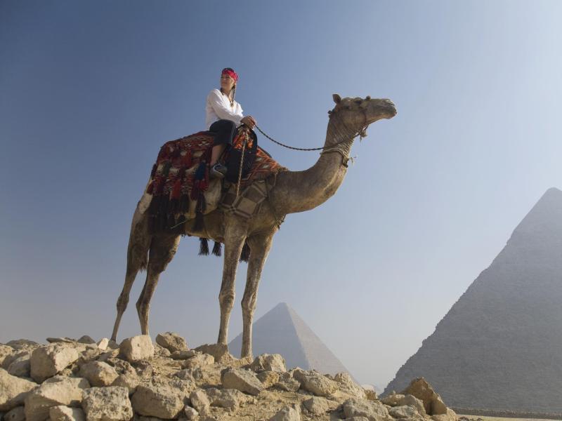 Bild zu Frau sitzt auf Kamel