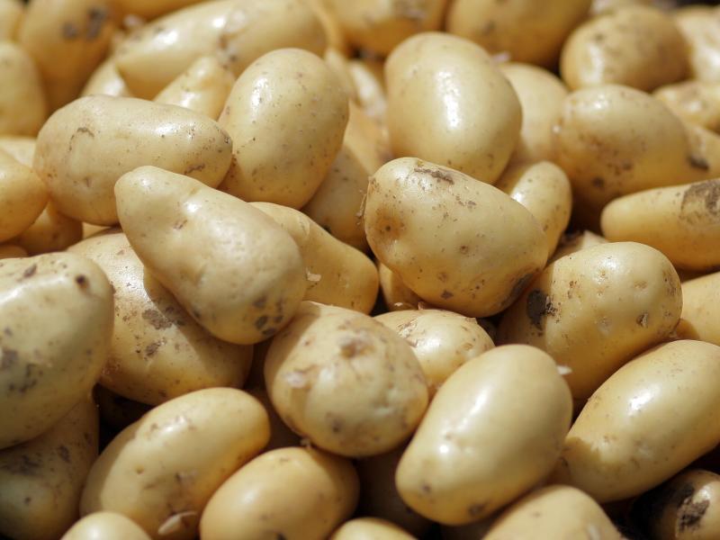 Bild zu Junge Kartoffeln