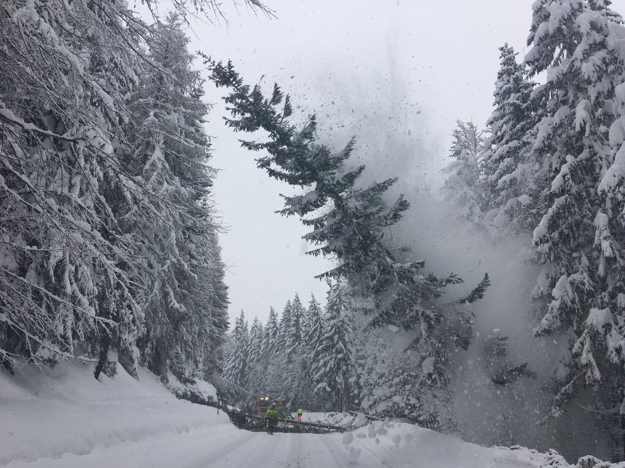 Bild zu Schneechaos