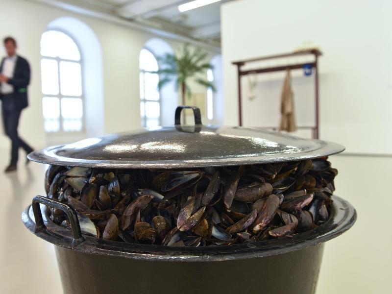 Bild zu Broodthaers-Ausstellung