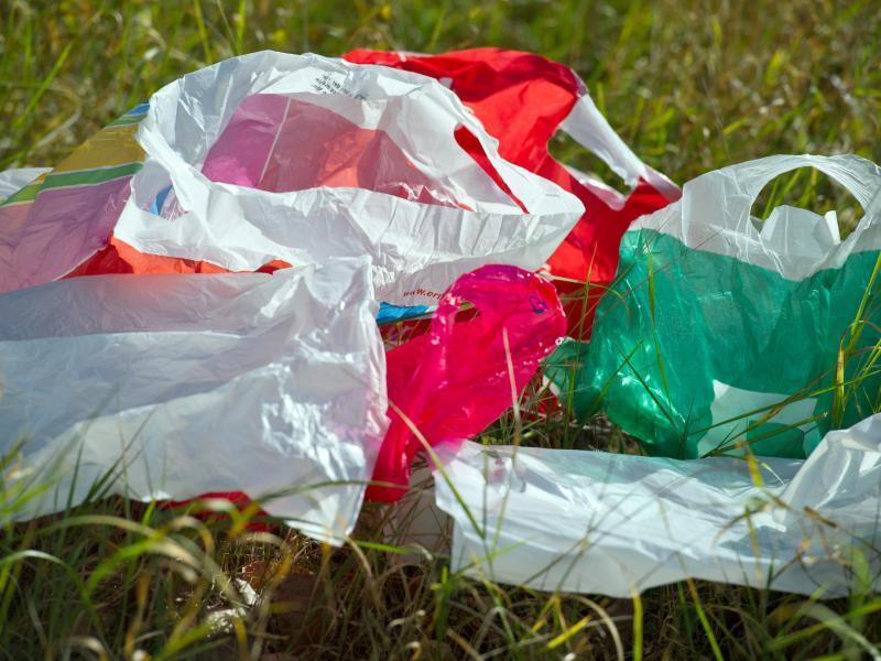 Bild zu Plastiktüten