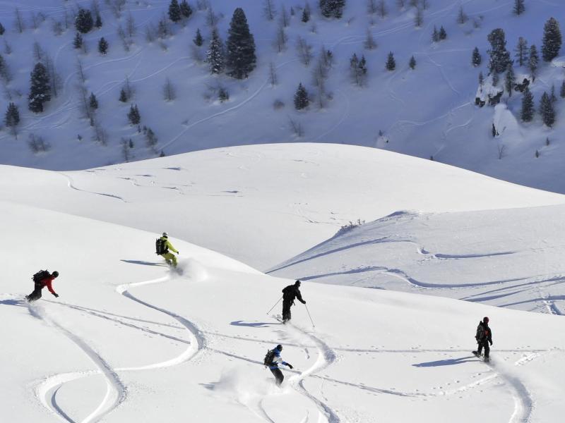 Bild zu Snowboarder und Ski-Fahrer