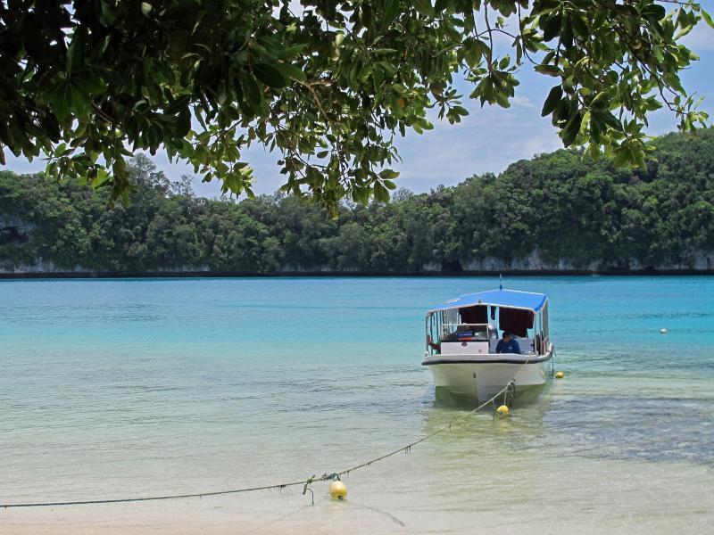 Bild zu Inselstaat Palau