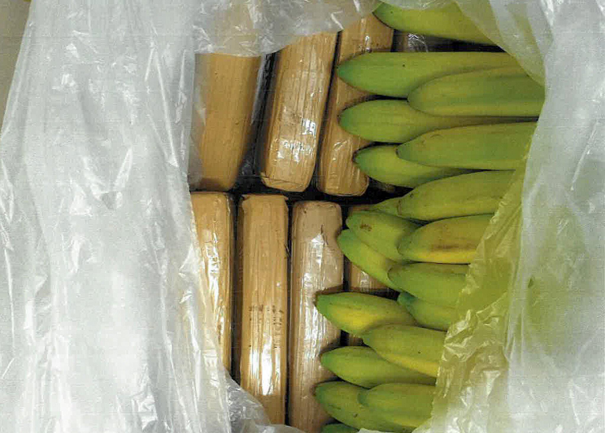 Bild zu Zollfahndung stellt 100 kg Kokain in Bananenlieferung sicher