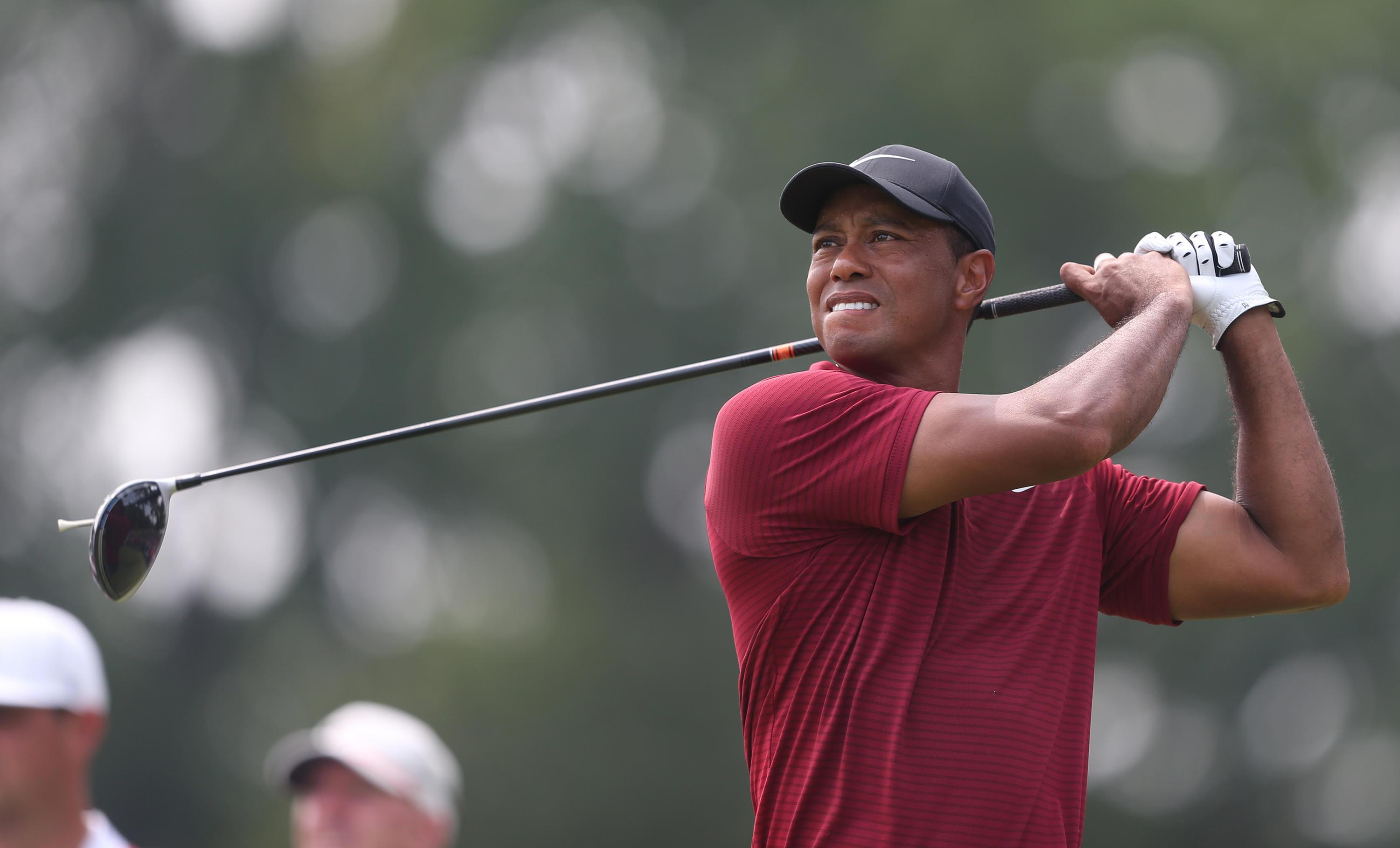 Bild zu Tiger Woods, PGA, Bellerive Country Club, Town and Country, Missouri, USA