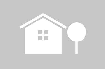 Icon Haus und Baum