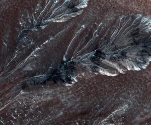 Frost auf dem Mars.