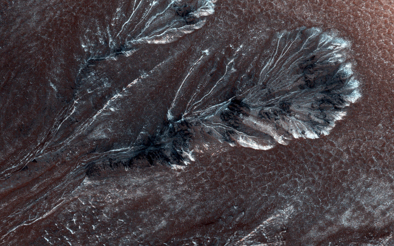 Bild zu Frost auf dem Mars.