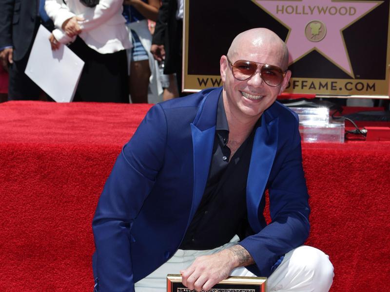 Bild zu Pitbull