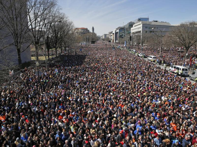 Bild zu Demonstration in Washington
