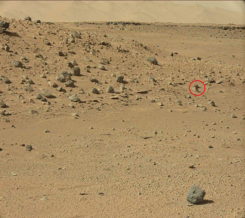 Bild zu Neues Marsmännchen
