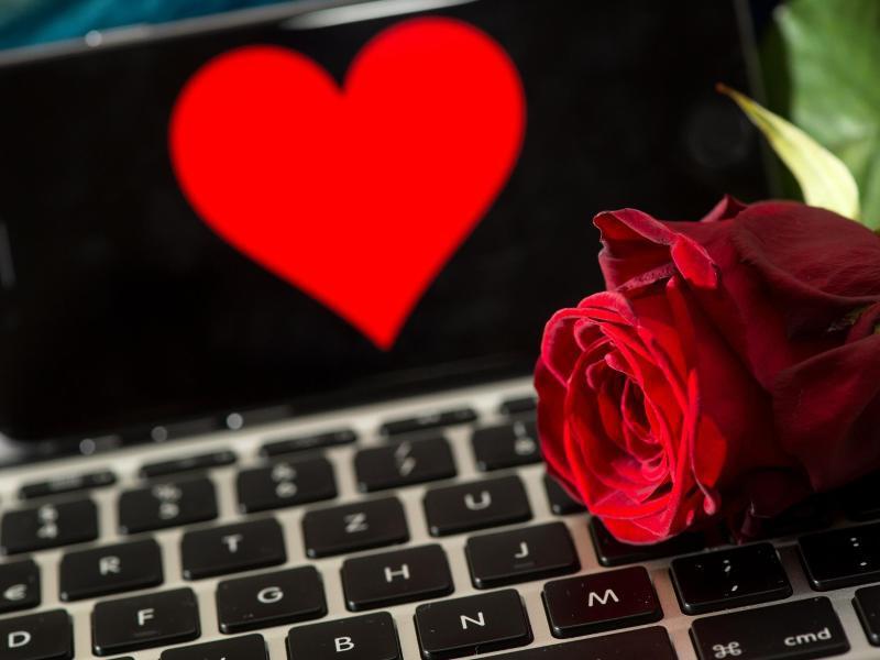 Bild zu Rose liegt auf einer Tastatur