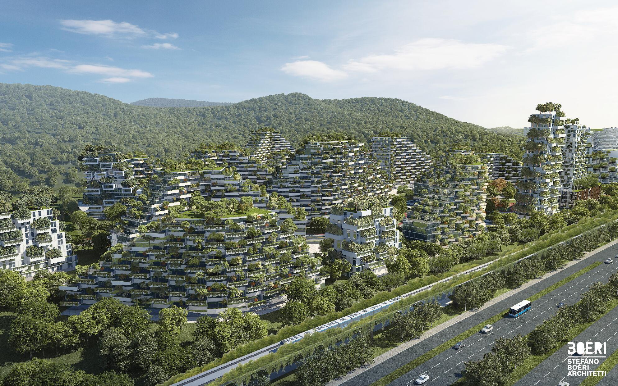 Bild zu Wald-Stadt