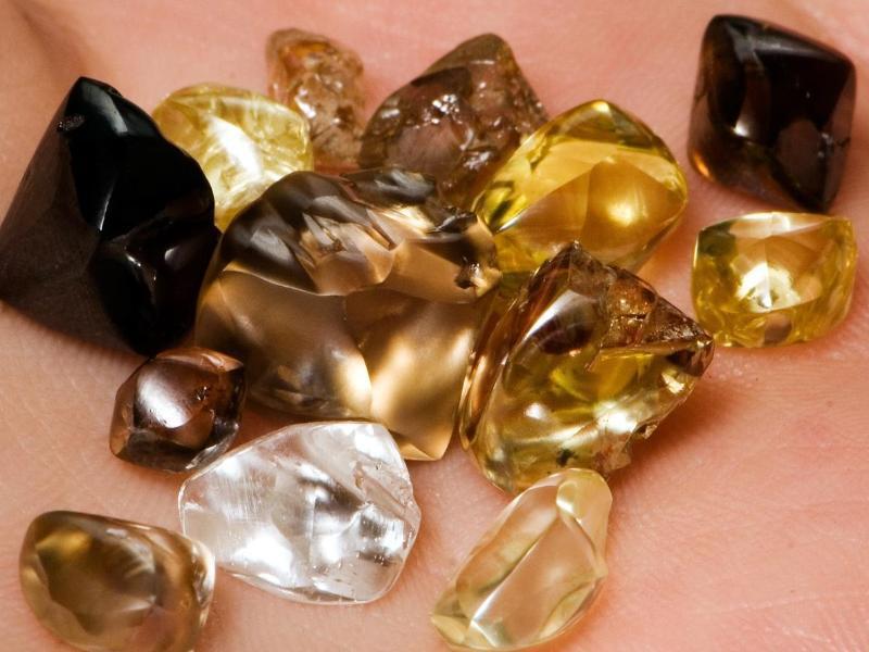 Bild zu Vielfalt der Juwelen