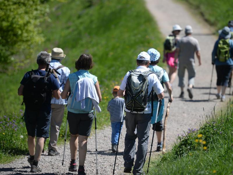 Bild zu Wandern im Schwarzwald