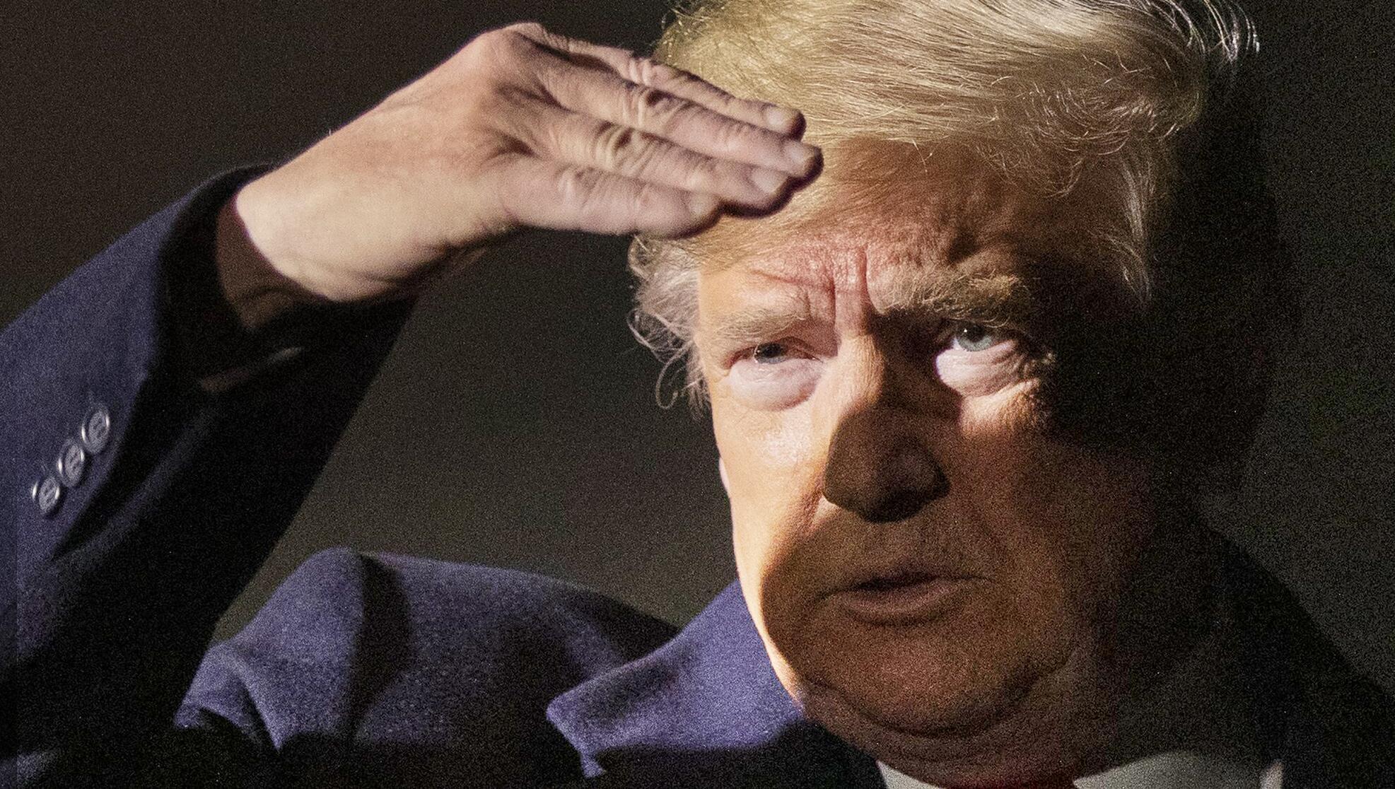 Bild zu Trump