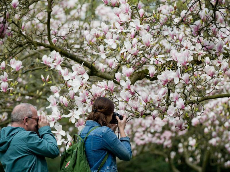 Bild zu Fotografen unterwegs
