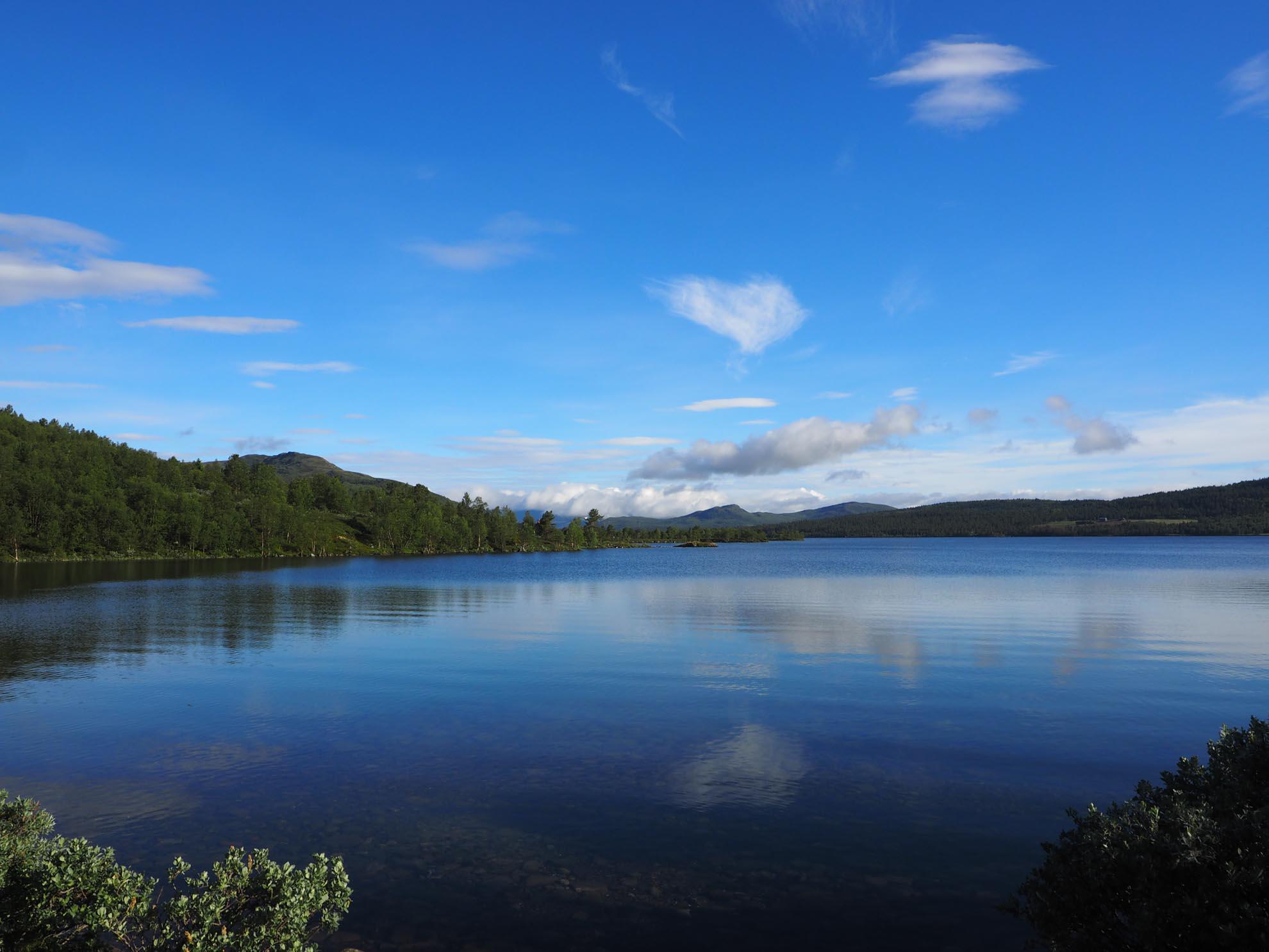 Bild zu Nasjionalparkrikets, Norwegen, Natur