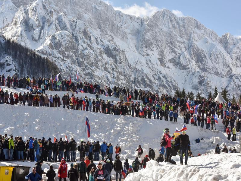 Bild zu Skispringen in Planica