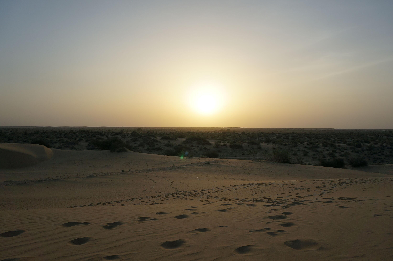 Bild zu Jaisalmer