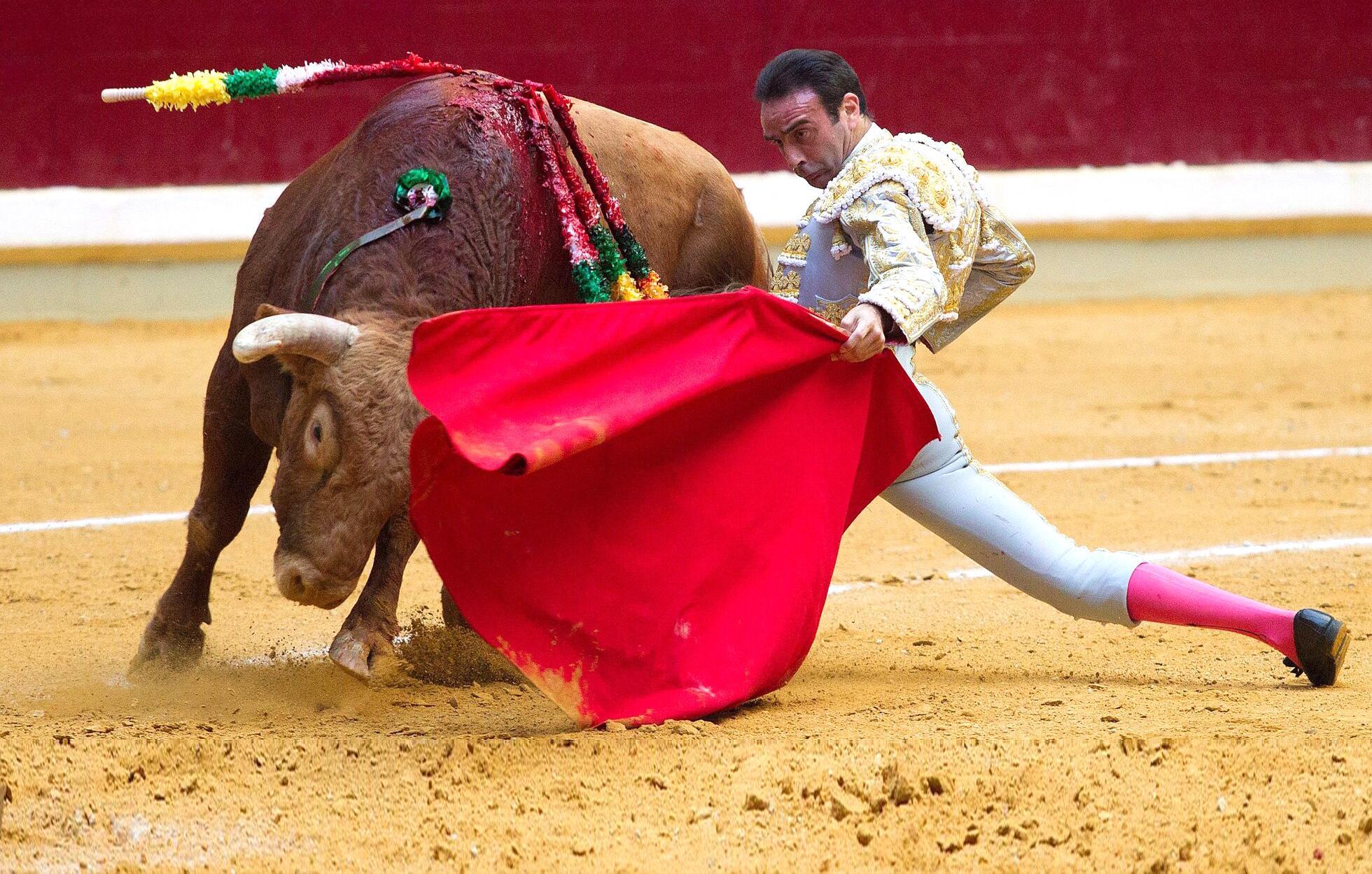 Bild zu Enrique Ponce, Torero, Stierkampf, Arena, San Mateos