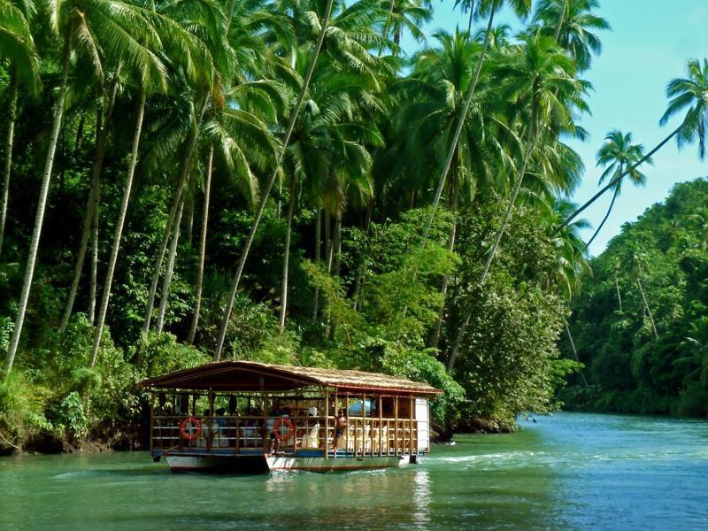 Bild zu Insel Bohol