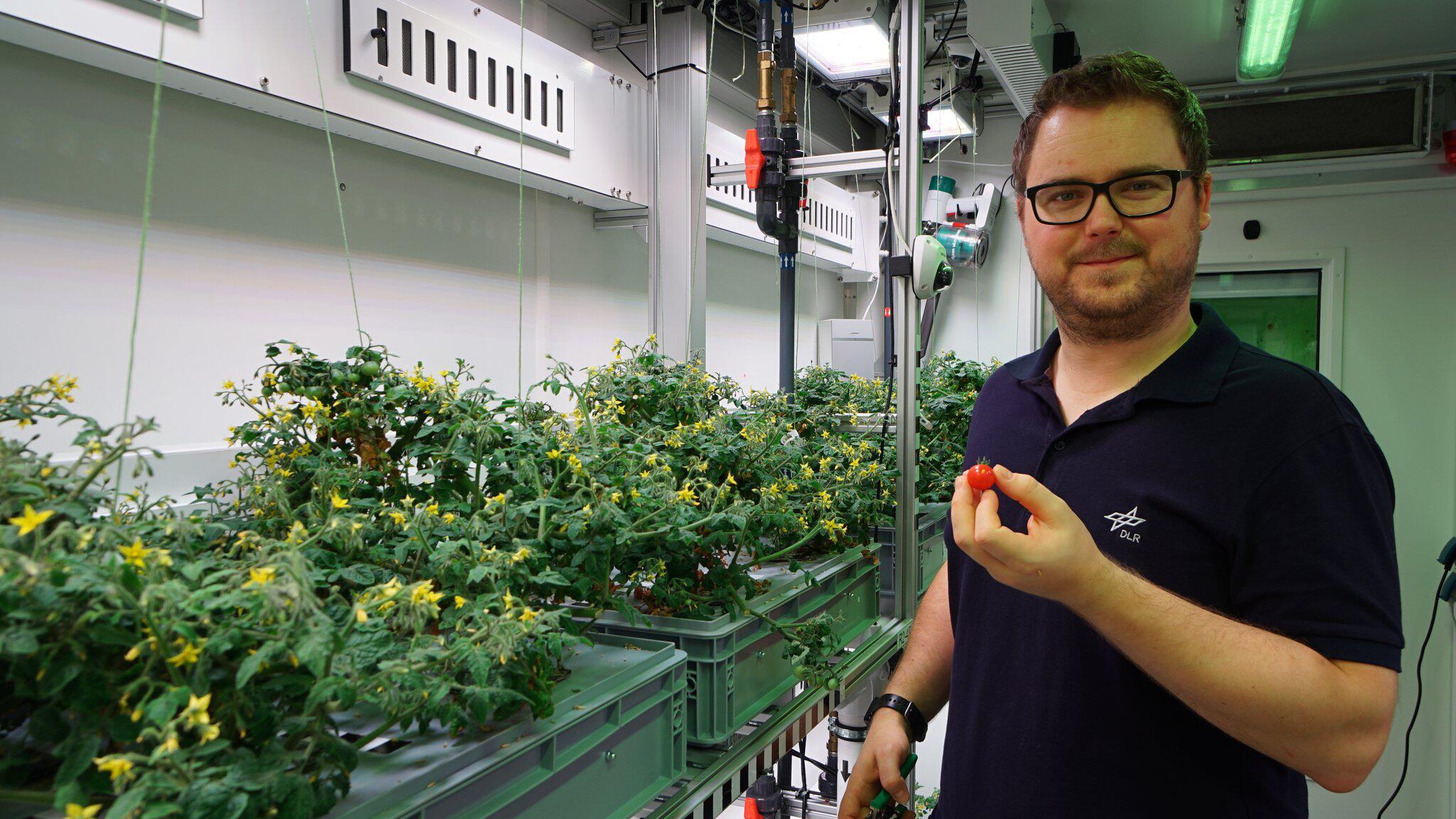 Bild zu Gemüse aus Antarktis-Gewächshaus bald auch im All?