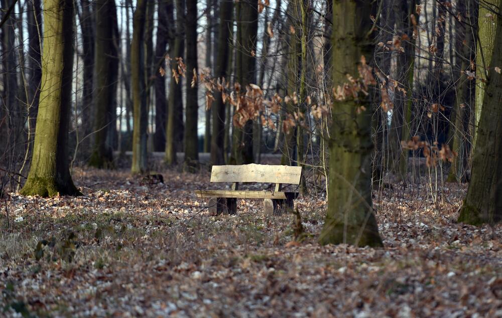 Rudi Assauer beigesetzt