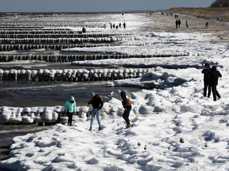 Bild zu Eis an der Ostsee
