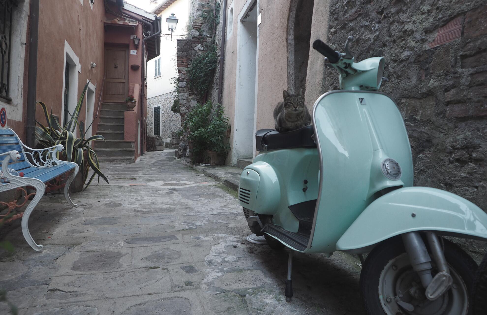 Bild zu Porto Ercole, Italien, Toskana