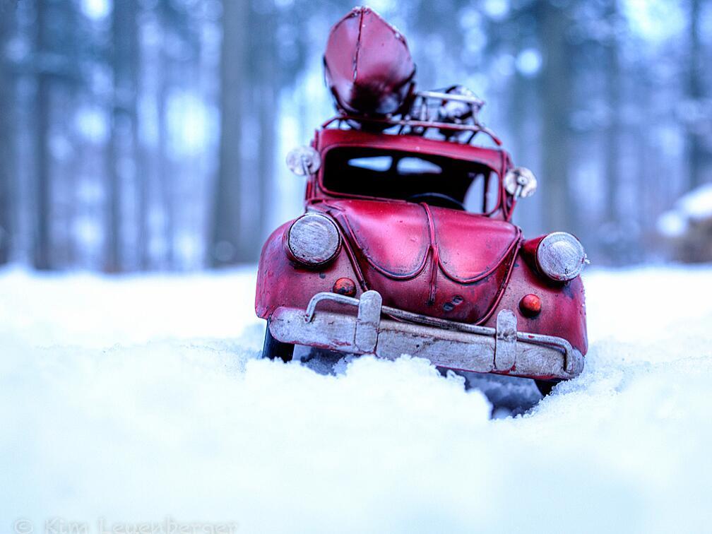 Bild zu Kanufahren in der Winter-Wildnis