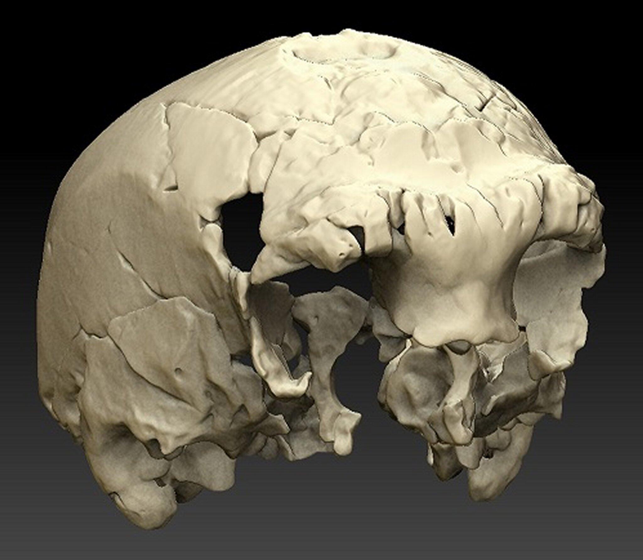 Bild zu 400 000 Jahre alter Menschenschädel