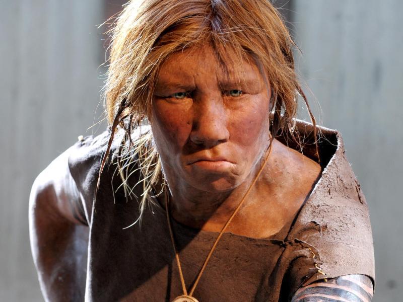 Neandertaler Dna