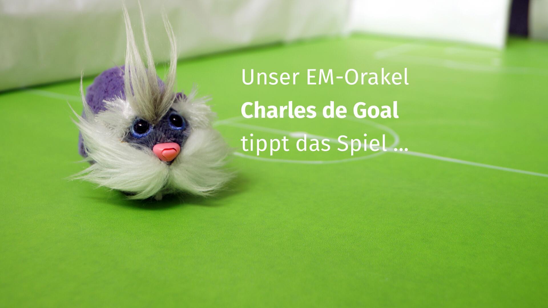"""Bild zu Unser """"Charles de Goal"""" tippt auf Spanien-Sieg gegen Italien."""