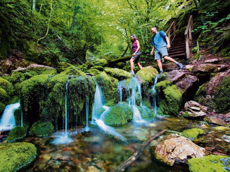 Bild zu Fundy-Nationalpark