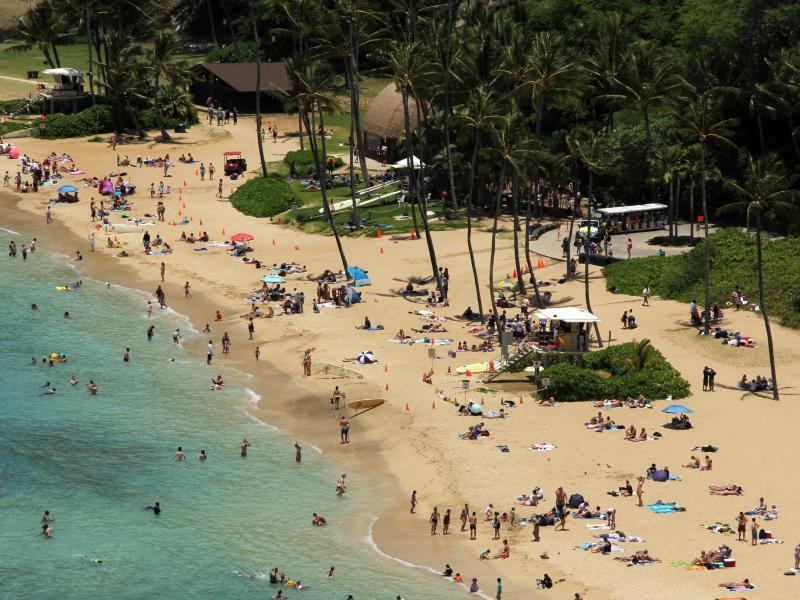 Bild zu Hanauma Bay State Park auf Oahu